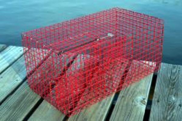 how to make fish traps for bait