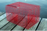 Offshore Pinfish Trap