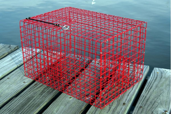 Offshore pinfish trap pinfish traps live bait pens for Fishing pole crab trap