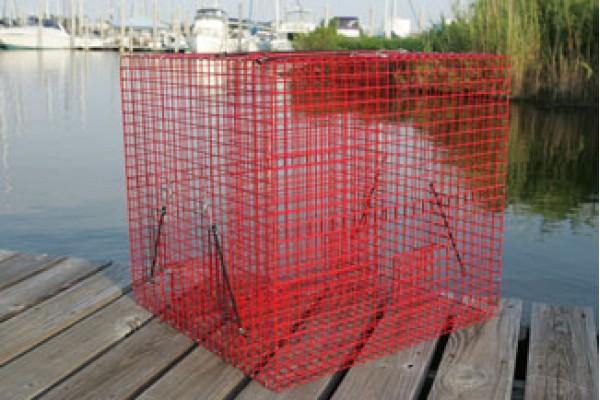 Tournament pinfish trap pinfish traps live bait pens for Bait fish trap